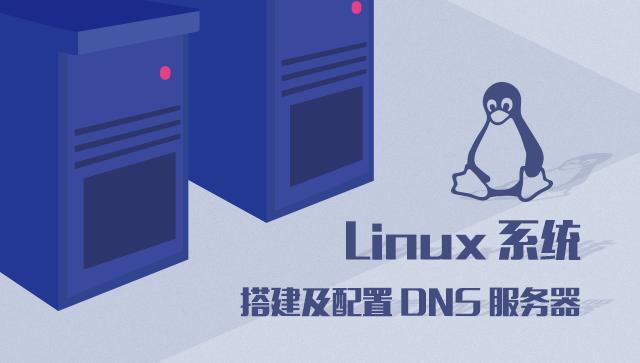 Linux 系统搭建及配置 DNS 服务器