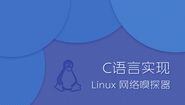 C语言实现 Linux 网络嗅探器