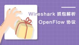Wireshark 抓包解析 OpenFlow 协议