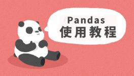 Pandas 数据处理基础入门