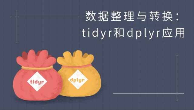 数据整理与转换:tidyr 和 dplyr 应用